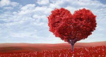 エターナル・フレイム,子守歌,Eternal Flame,胸いっぱいの愛,バラード,楽曲,バングルス